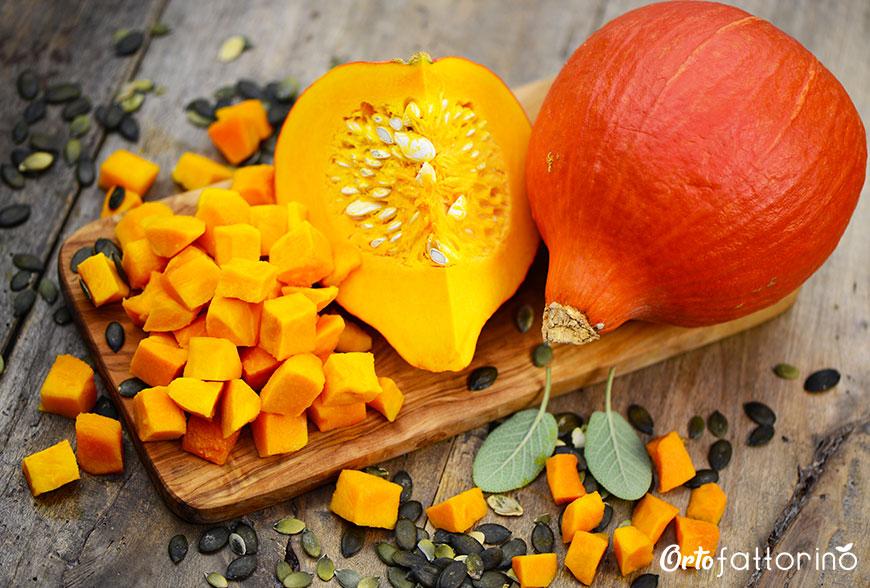 Zucca: proprietà e benefici dell'ortaggio autunnale per eccellenza